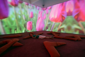 Pipilotti Rist and her work Lobe of the lung (Keystone)